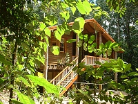 Rivers Edge Rainforest Retreat - Goulburn Accommodation