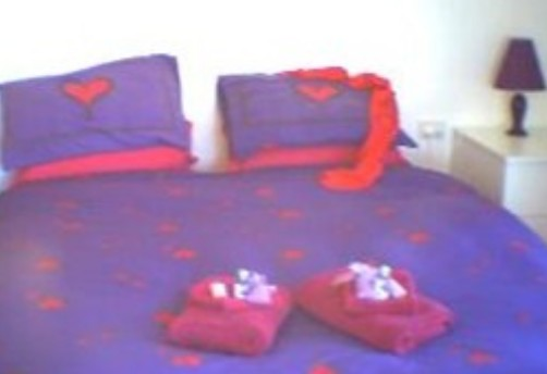 Aloomba Lavender - Accommodation - Goulburn Accommodation