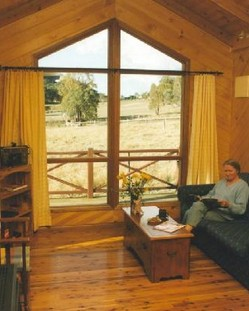 Wisteria Cottage - Goulburn Accommodation