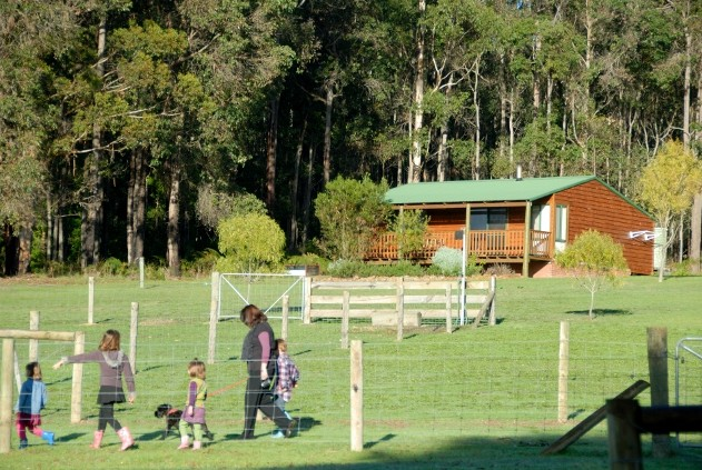 Diamond Forest Farm Stay - Goulburn Accommodation
