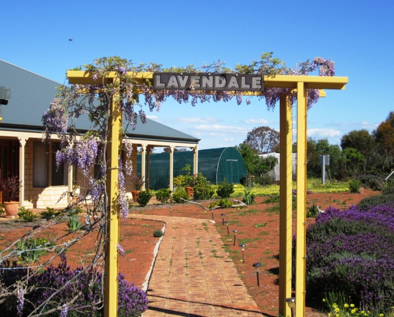 Lavendale Farmstay and Cottages - Goulburn Accommodation