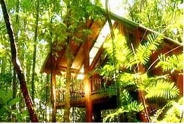 The Canopy Treehouses - Goulburn Accommodation
