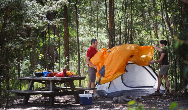 Bald Rock campground and picnic area - Goulburn Accommodation