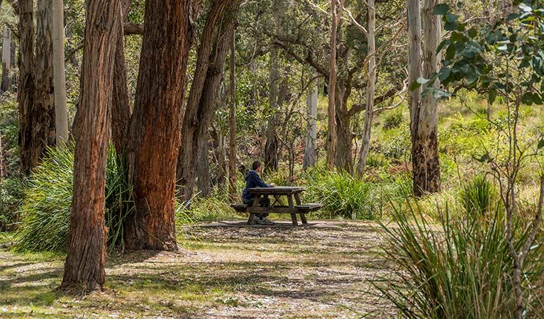 Koreelah Creek campground - Goulburn Accommodation