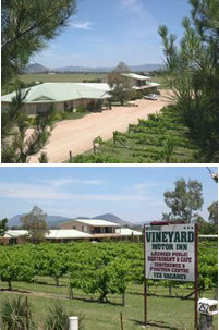 Mudgee Vineyard Motor Inn - Goulburn Accommodation