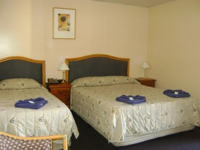 Mudgee Motor Inn - Goulburn Accommodation