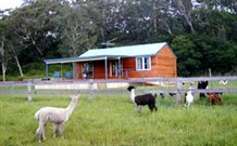 Moorallie Cottage Farm Stay - Goulburn Accommodation