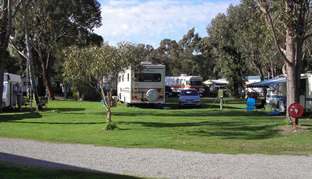 Pinjarra Caravan Park - Goulburn Accommodation