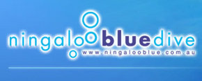 Ningaloo Blue Dive - Goulburn Accommodation