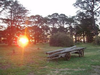 Point Cook Homestead - Goulburn Accommodation