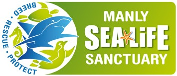 Manly SEA LIFE Sanctuary - Goulburn Accommodation