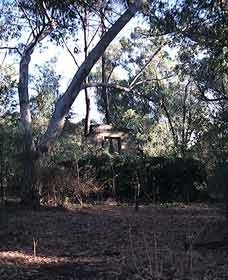Ghost House Walk Trail Yanchep National Park - Goulburn Accommodation