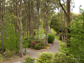 Mount Lofty Botanic Garden - Goulburn Accommodation