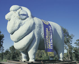 Giant Ram Tourist Park - Goulburn Accommodation