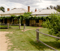The Blue Duck Inn Hotel - Goulburn Accommodation