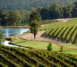 Brookhampton Estate Vineyard - Goulburn Accommodation
