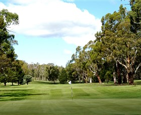 Cooma Golf Club - Goulburn Accommodation