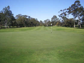 Maffra Golf Club - Goulburn Accommodation
