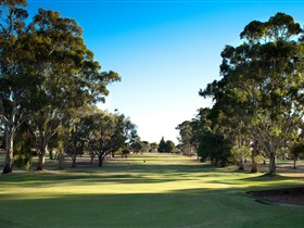 Loxton Golf Club - Goulburn Accommodation