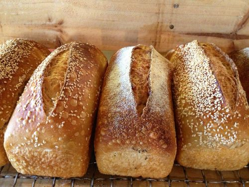 Blackbird Artisan Bakery - Goulburn Accommodation