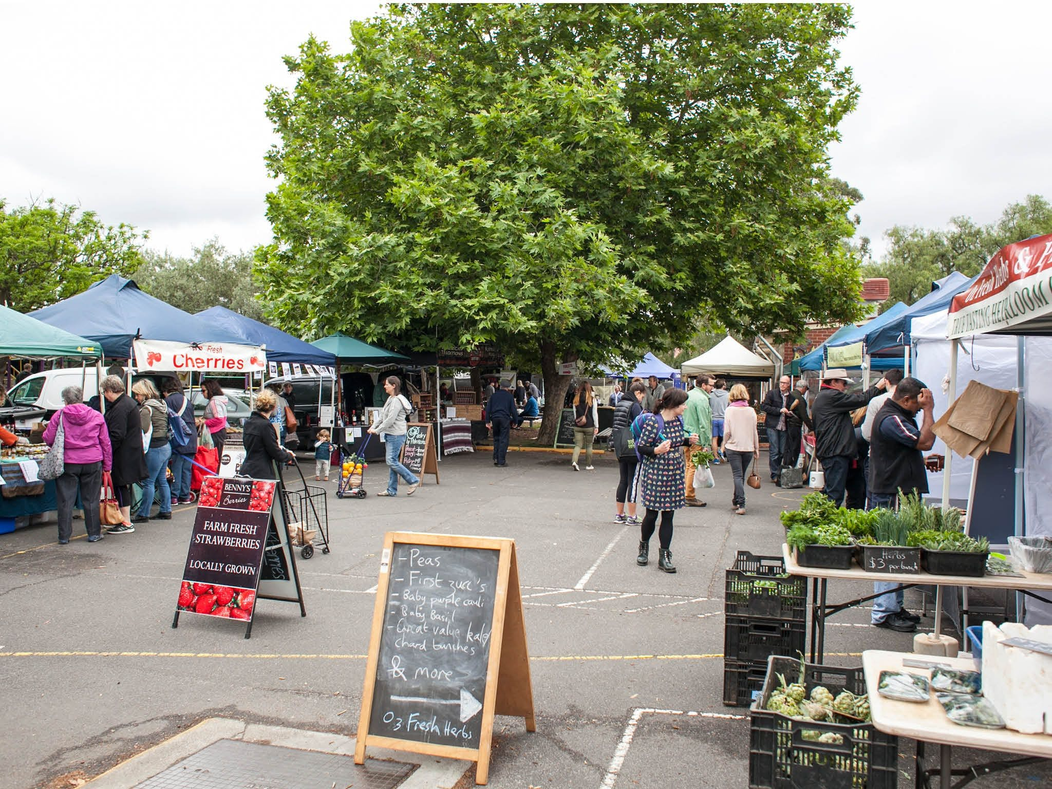 Alphington Farmers' Market - Goulburn Accommodation