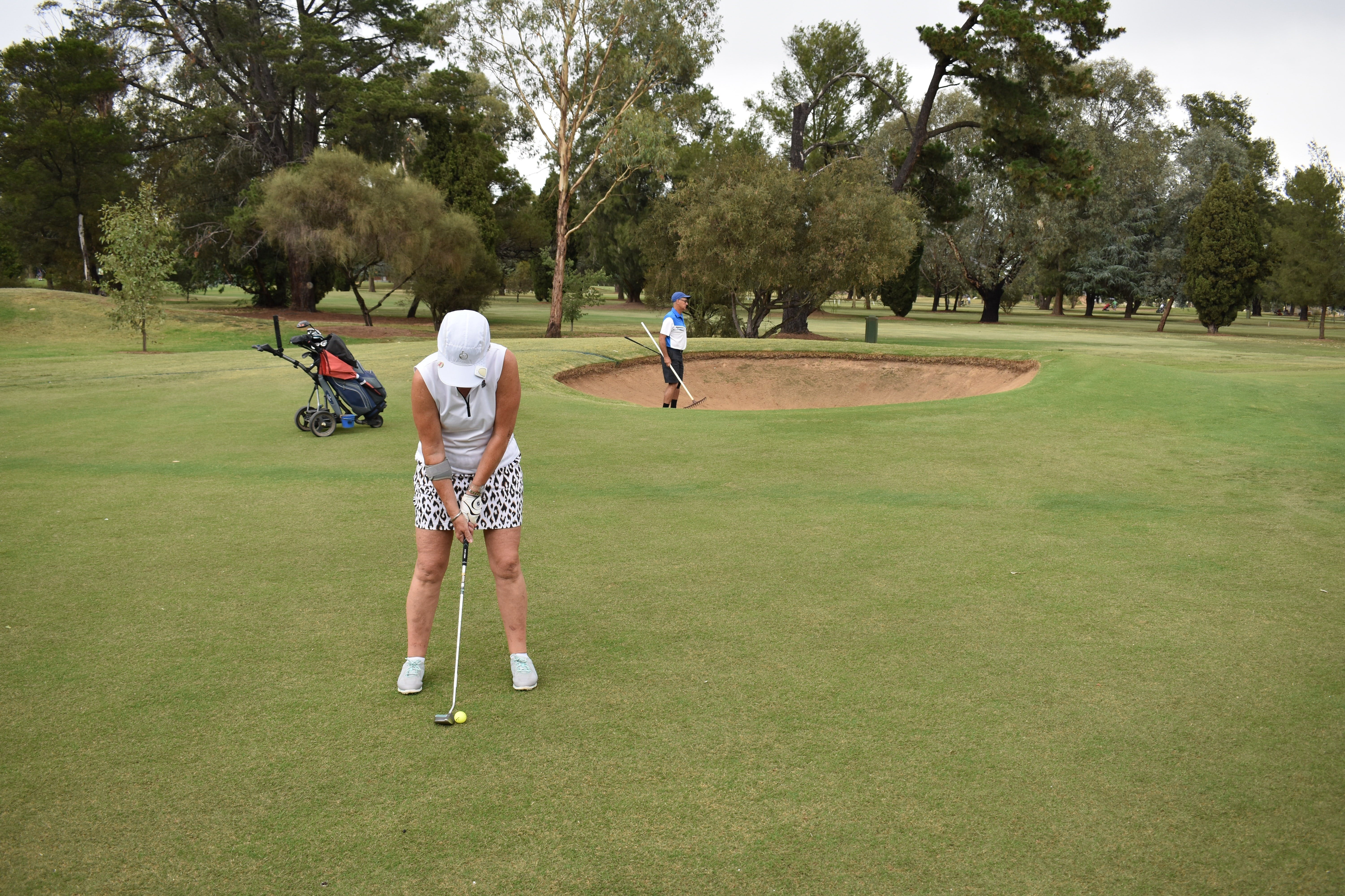 Howlong Golden Shoe Nine Hole Golf Tournament - Goulburn Accommodation