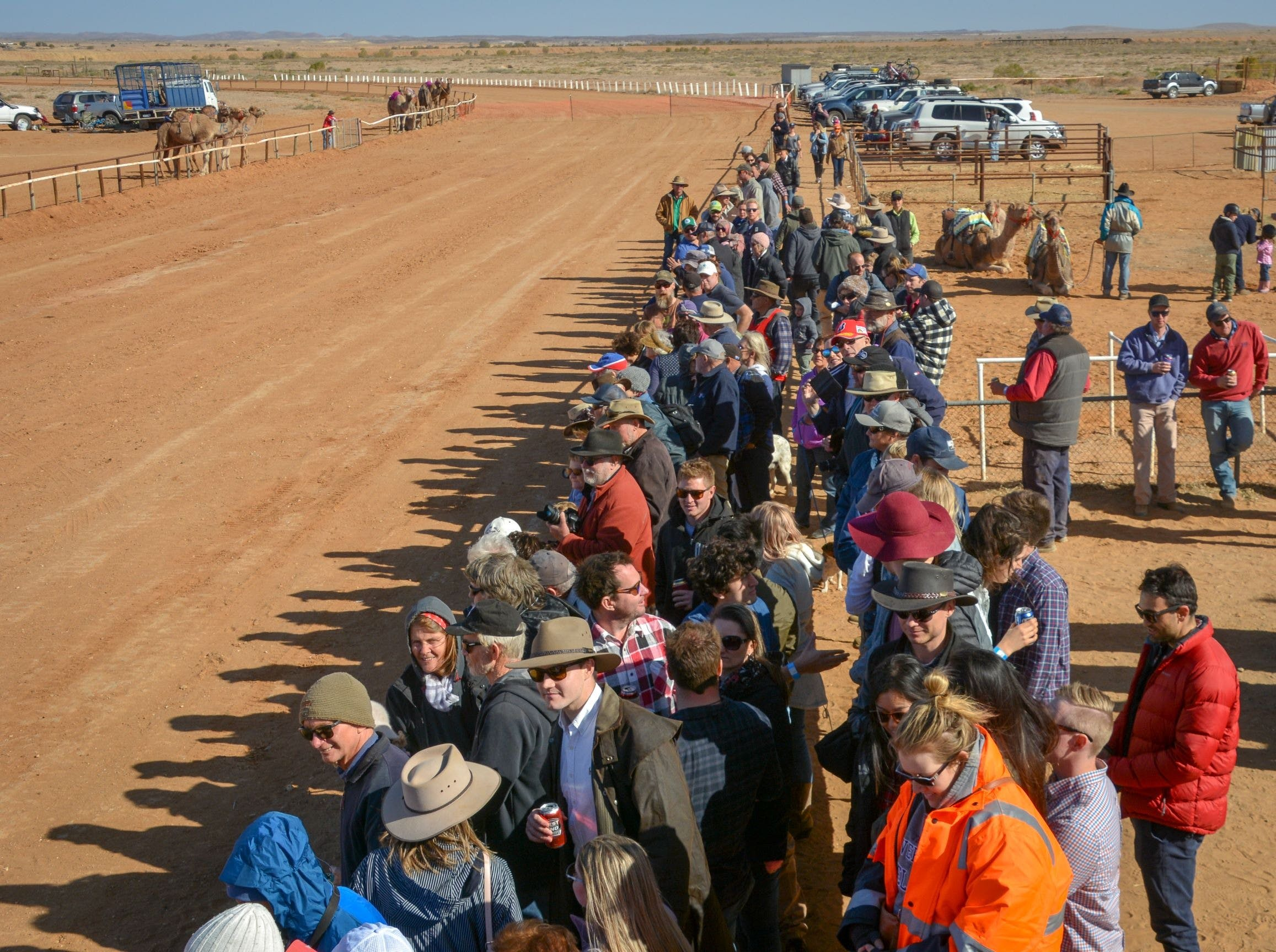 28th Marree Australasian CAMEL CUP 3 July 2021 - Goulburn Accommodation