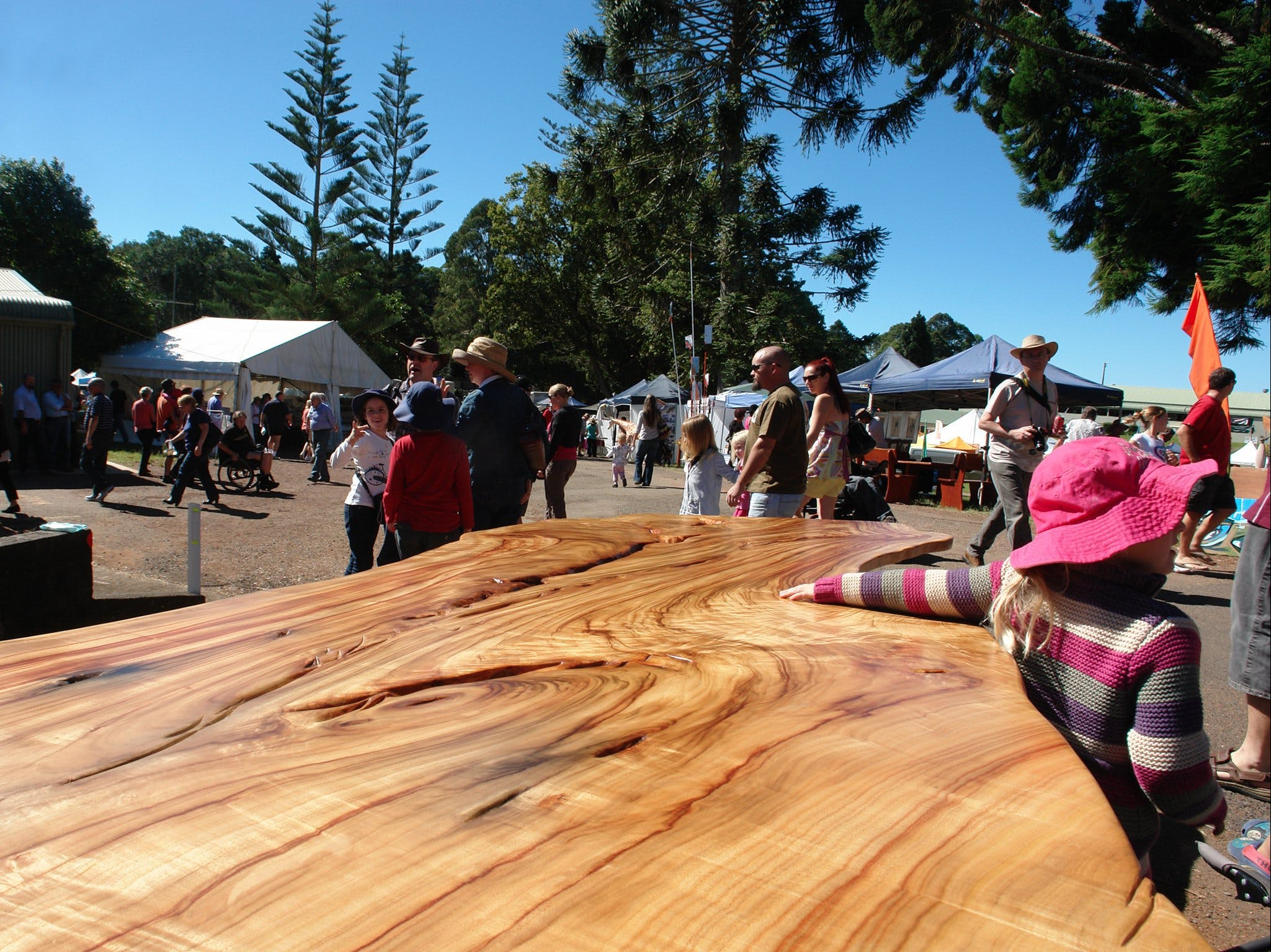 Maleny Wood Expo From Seed to Fine Furniture - Goulburn Accommodation
